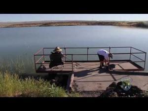 Video: Dog Creek Reservoir