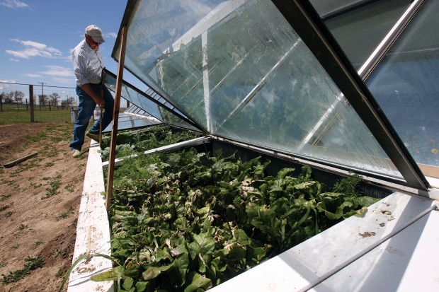 Going underground salvaged building materials make solar for Materials to make a greenhouse