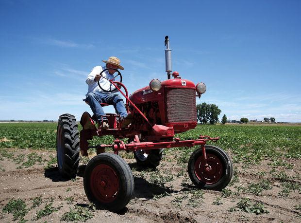 Mini Antique Tractors : Antique tractors connect enthusiasts with past