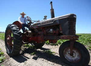 Gallery: Tractors of Southern Idaho
