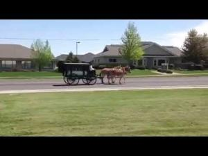 Video: Dorothy Custer's Last Ride