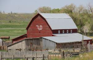 Gallery: Barns of Southern Idaho