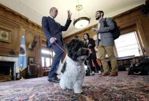 Interior Department launches 'Doggy Days,' becoming first federal agency to welcome pets