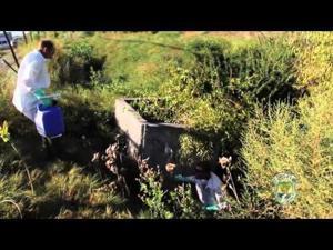 Video: Improving Riley Pond Fishing