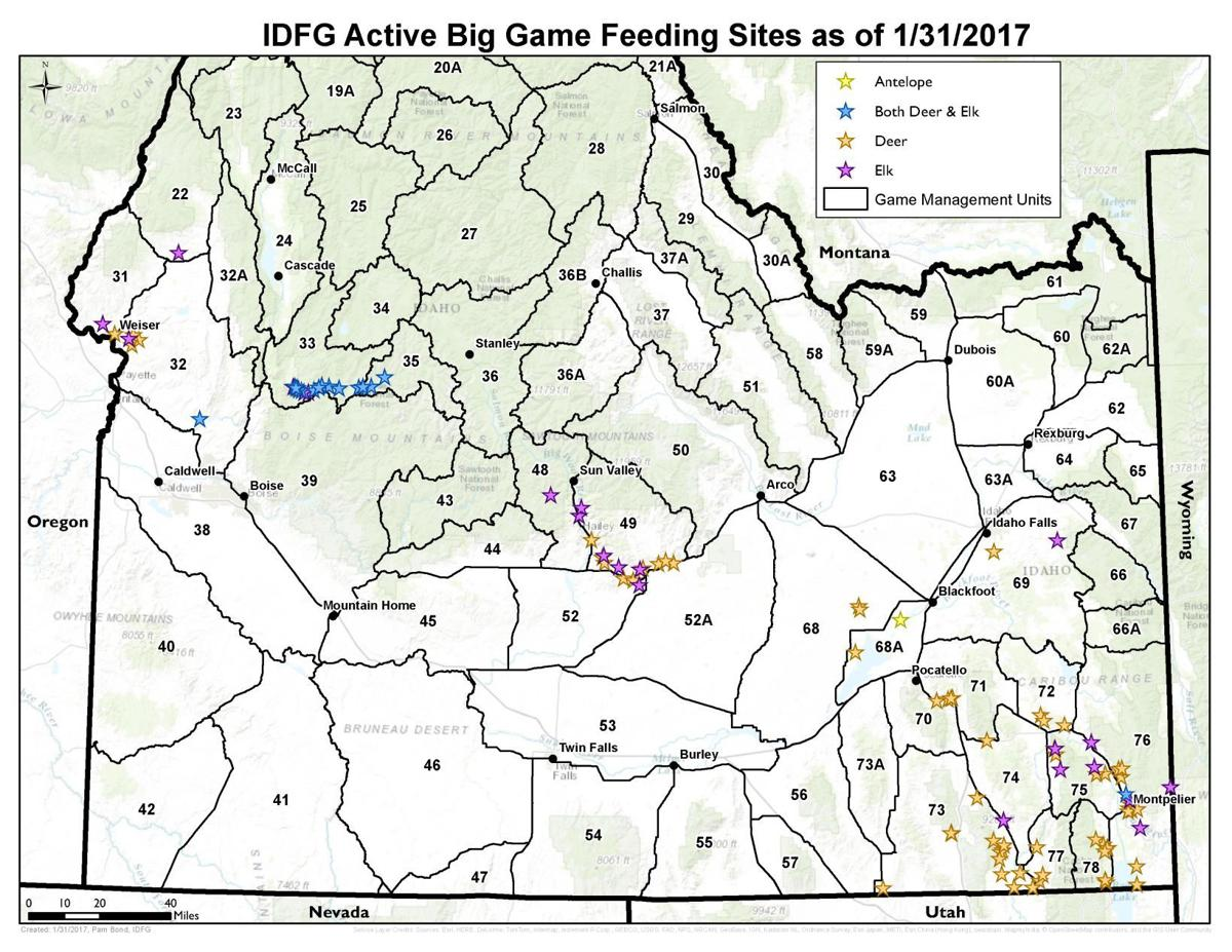 Idaho spending 650k to feed elk deer pronghorn for Idaho department of fish and game