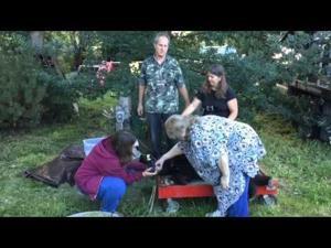 Video: Cinder Goes Home