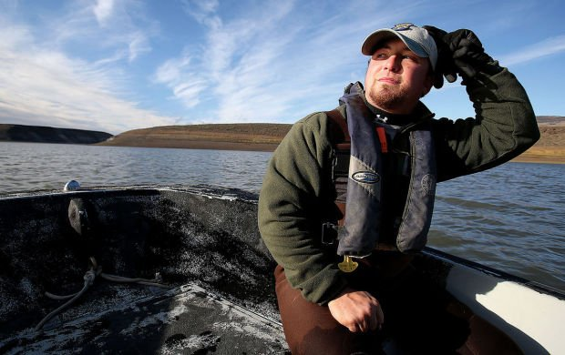 Walleye netting probes salmon falls fishery southern for Idaho department of fish and game