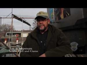 Video: CSI, Fish and Game Raising Snake River Sturgeon