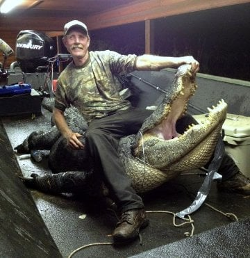 Prescott man bags record alligator near millwood dam for Millwood lake fishing report