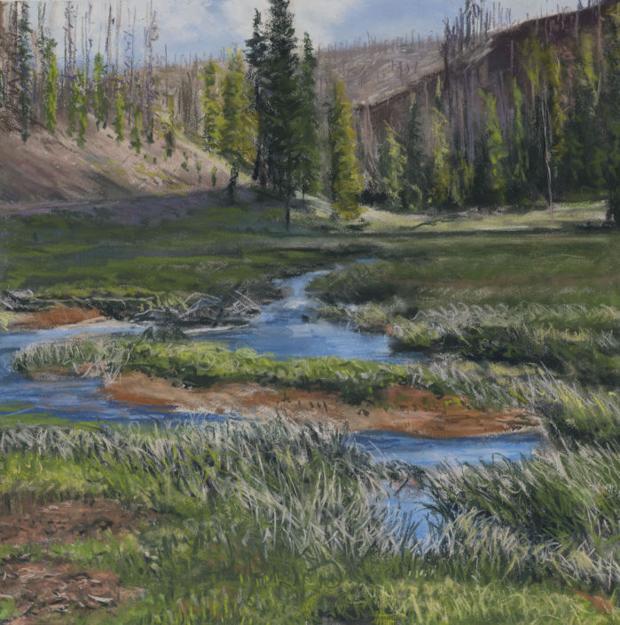 Bitterroot artist's landscape pastels a celebration of sight