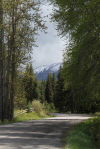 Glacier Park's Inside North Fork Road to be closed Wednesday