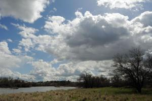 Bighorn River land purchase will add 425 acres to Grant Marsh Wildlife Management Area