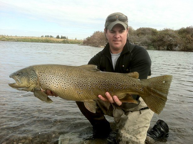 Idaho biologist zaps whopper 31 inch brown trout on snake for Fish and game office near me