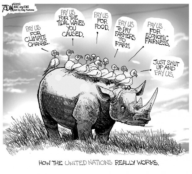 Cartoon Un Resembles Flock Of Birds Pestering Us To Pay
