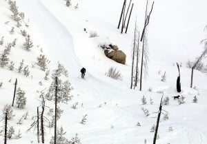 Image Result For Montana Snowmobile Trail