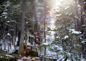 Western Montana counties relieved, anxious about federal forest reserve extension