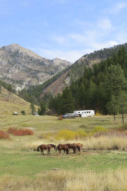 Montana Fish And Wildlife Commission Oks Agency Land