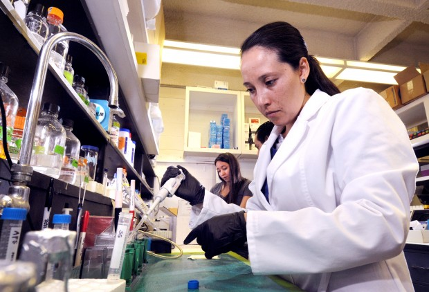 UM Native research lab director search brings controversy | Local ...