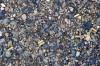 .22 caliber shell casings litter the road