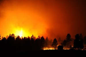 Let it burn? Federal agencies draft national wildland fire strategy