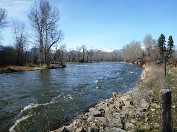 Montana fish and wildlife commission oks bitterroot river for Mt fish wildlife and parks