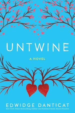 In Edwidge Danticat's lyrical 'Untwine,' a teen rebuilds her life