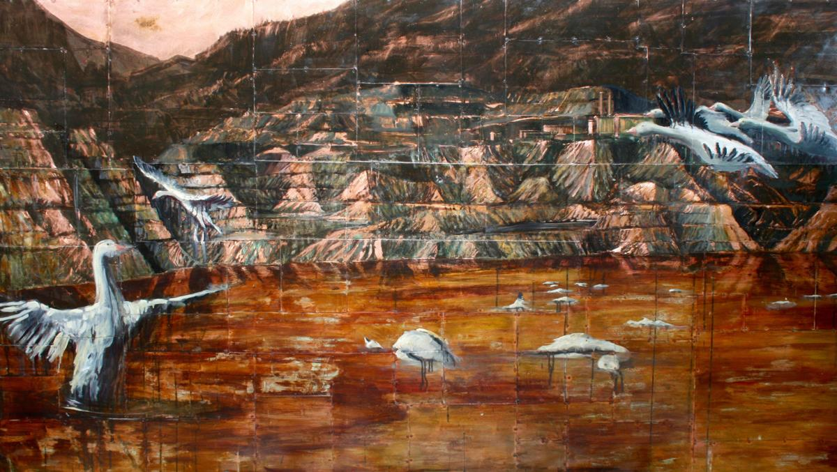 Metals acid in berkeley pit water killed geese report for Knights landing fishing report