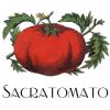 Jesus Tomatoes