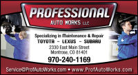 Professional Auto Works llc