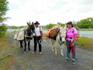 <p><span>Rachel and Wolf Karneffel are trekking across the Western Slope to raise awareness about post traumatic stress disorder and donkeys.</span></p><p><span> </span></p>