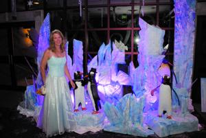Gala sets attendance record for HopeWest