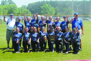 Lady Hornets win region title, statebound