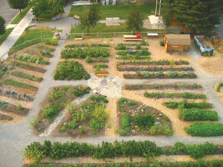 Hope Garden Springs To Life In Hailey Hailey