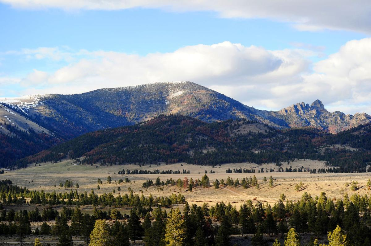 Wilderness walks: Guided outings around Helena, Lincoln ...