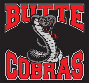 Hockey returning to Butte with formation of Cobras