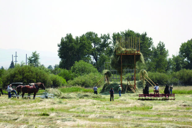 Putting Up Hay Demonstration Highlights Old Time Stacker