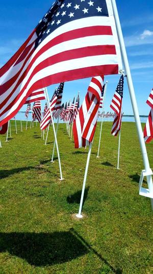 Cambridge Rotary unfurls Flags for Heroes project