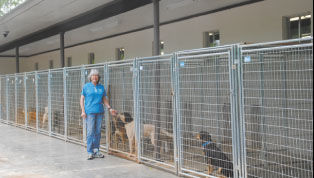 Save A Pet works to maximize new shelter