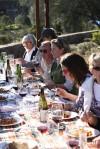 Scaggs Vineyards