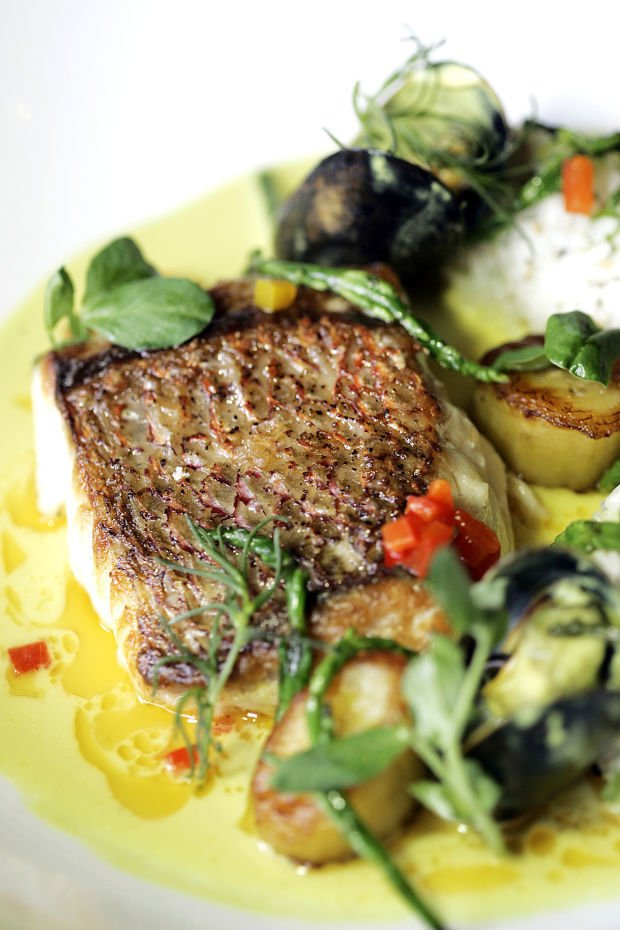 New chef maintains classic approach global accent at for A new napa cuisine
