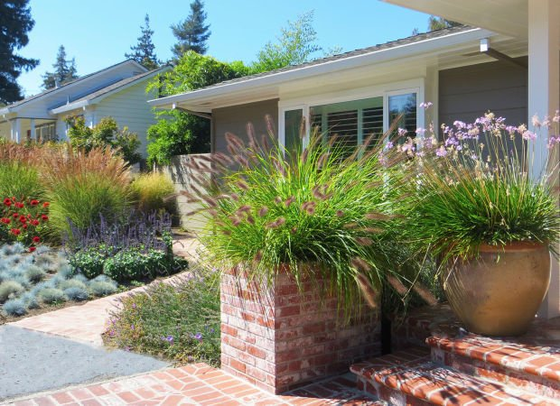 A nod to water wise landscaping Patti Cowger