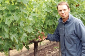 Winter: A time of rest for the vines, but not grapegrowers