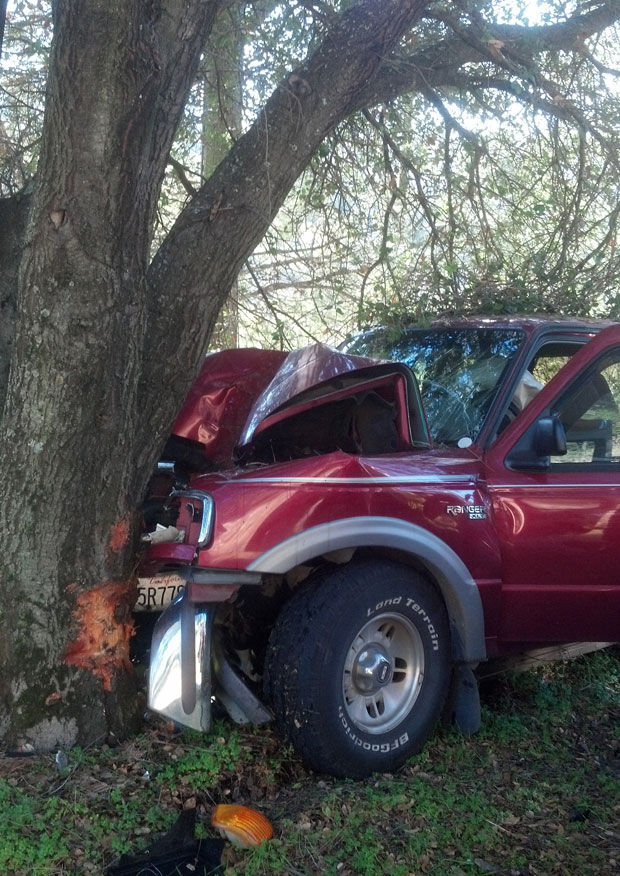 Ford Ranger Hits Tree
