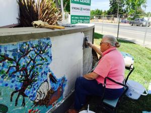 Public art project awarded to Calistogan