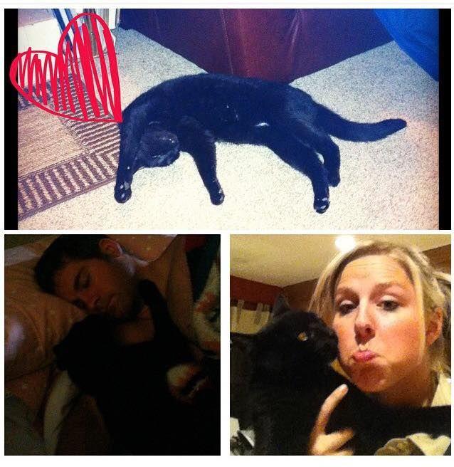 My Friend Tiffany The One Eyed Cat
