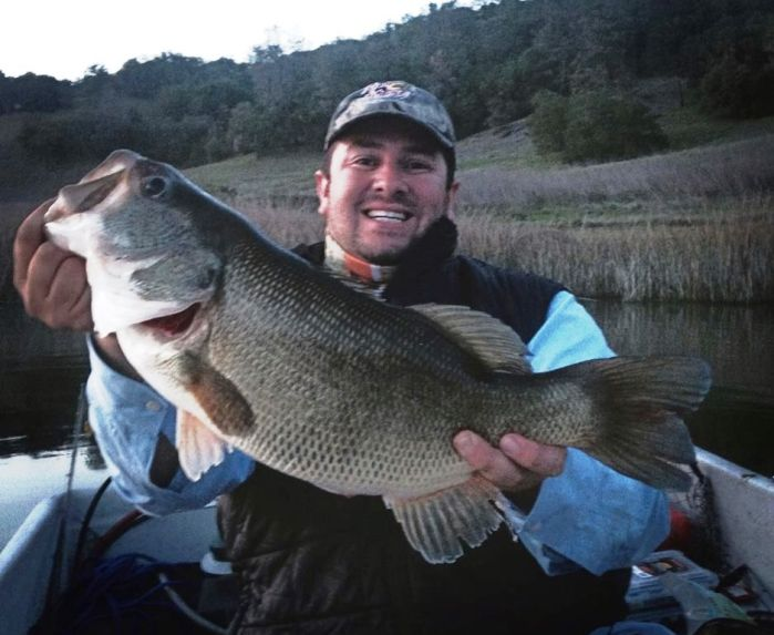 big bass caught at lake hennessey ForLake Hennessey Fishing