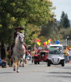 Yountville Parade