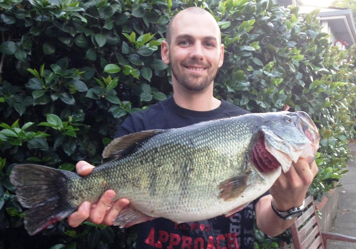 Bass bite at hennessey the best in memory outdoors for Lake hennessey fishing