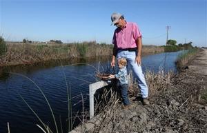 California farmers plan to avoid water-sucking crops