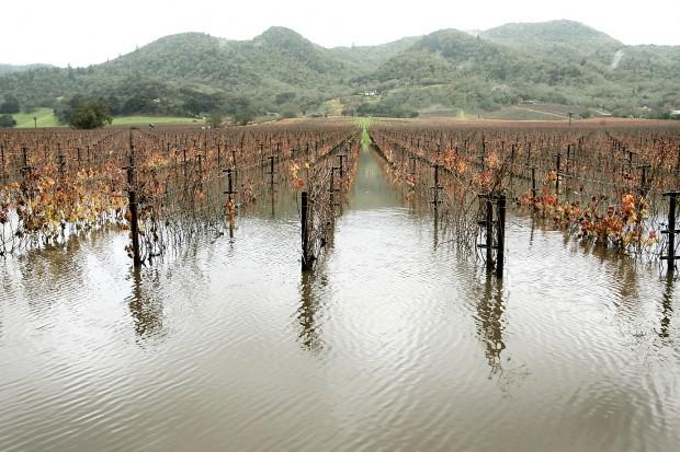 Napa Valley Flooding